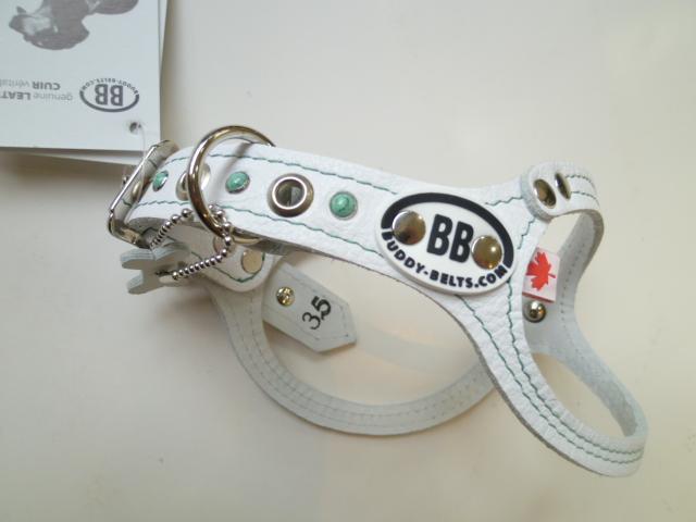 P1030479.JPGのサムネール画像