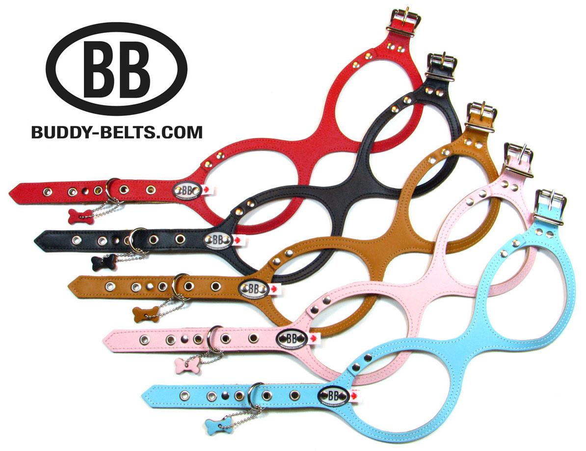 BB-5-Reg.Colors-LOGO-Web.jpg