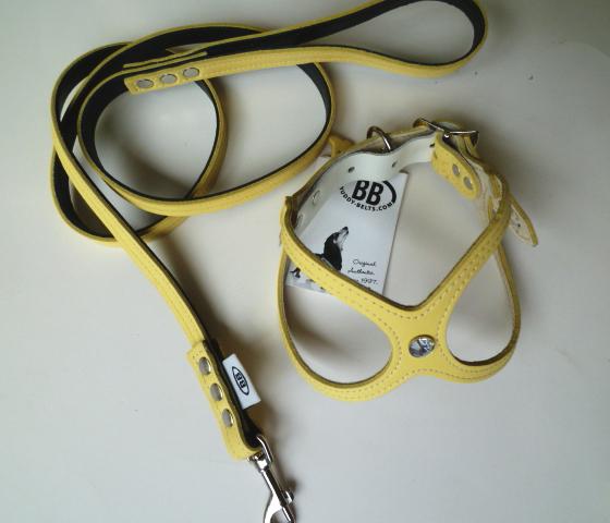 ButtercupSet (1).JPG
