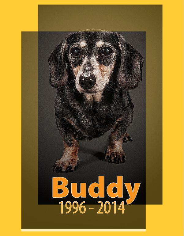 buddy2014.jpg