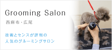 Grooming Salon 西麻布・広尾にある技術とセンスが評判の 人気のグルーミングサロン